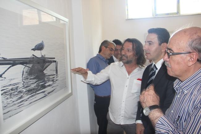FESTİVALDE AYNI ANDA DÖRT SERGİ BİRDEN AÇILDI galerisi resim 24