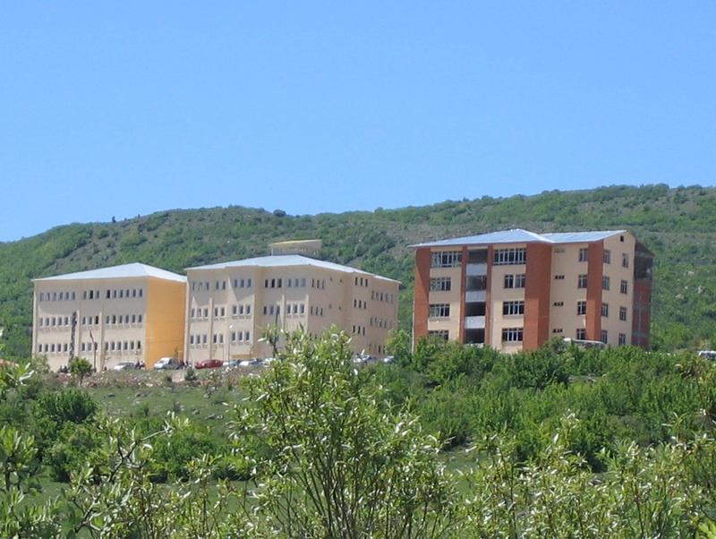 Şebinkarahisar Meslek Yüksekokulundan Etkinlikler