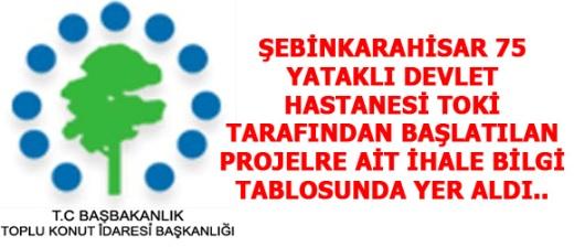 Şebinkarahisar'a yapılması düşünülen 75 Yataklı Devlet Hastanesi.....