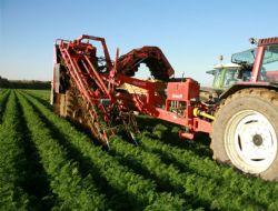 Tarımda yatırım projelerine destek