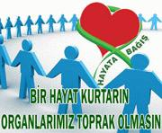 Suşehri Devlet Hastanesi bünyesinde ilk kez organ bağış bürosu kuruldu
