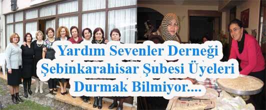 Yardım Sevenler Derneği Şebinkarahisar Şubesi üyeleri durmak bilmiyor.