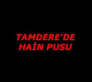 Tamdere'de Hain Pusu