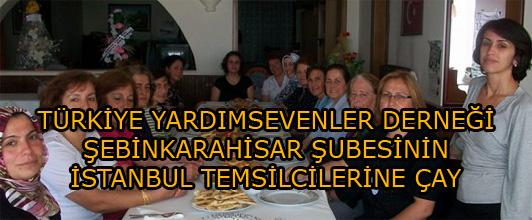 TYSD ŞEBİNKARAHİSAR ŞUBESİNİN İSTANBUL TEMSİLCİLERİNE ÇAY