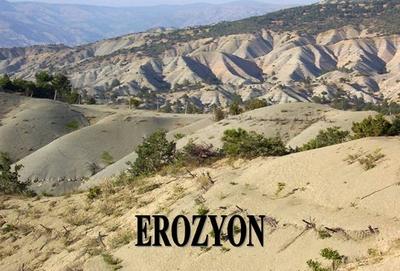Erozyon Önemli Ölçüde Kontrol Altına Alındı