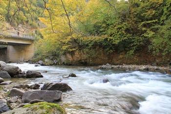 Şebinkarahisar'da Sonbahar Güzelliği