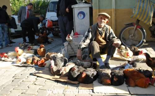 Pazarlarda Canlı Tavuklara İlgi Arttı