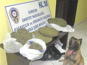 Giresun'da 3 Kilogram Uyuşturucu Ele Geçirildi