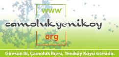 Çamoluk İlçesi Yayla Köyü YENİKÖY ün Web Sitesi Yayında