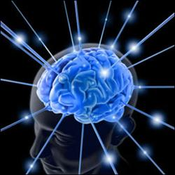 Beyninizin sağını mı, solunu mu kullanıyorsunuz