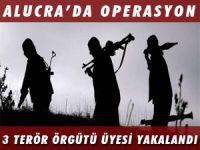 ALUCRA'DA OPERASYON 3 ÖRGÜT ÜYESİ YAKALANDI